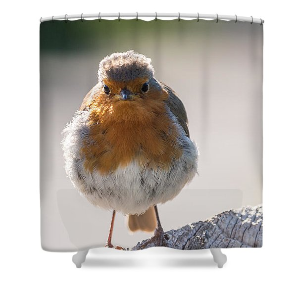 Robin Front Shower Curtain