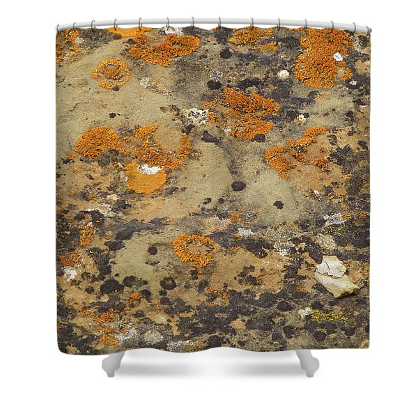 Shower Curtain featuring the photograph Rock Pattern by Cris Fulton