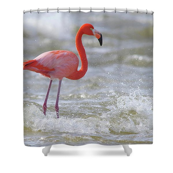 Rockin' Waves Shower Curtain