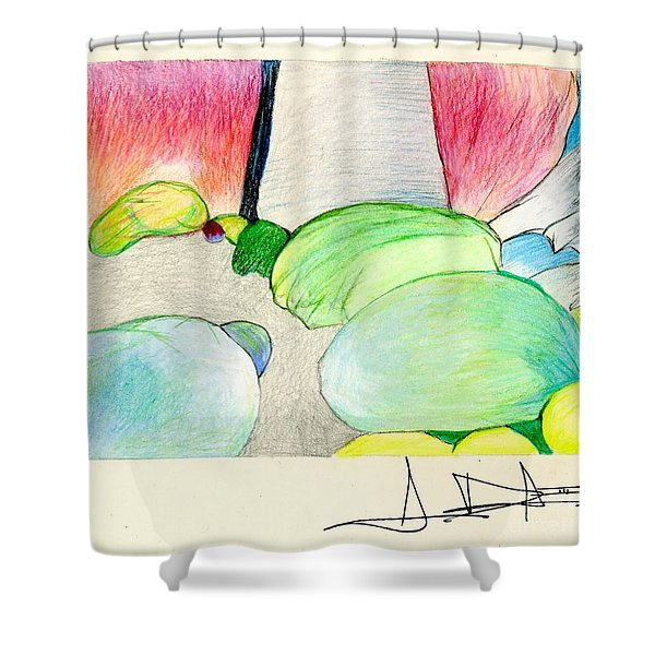 Rocks On Path Shower Curtain