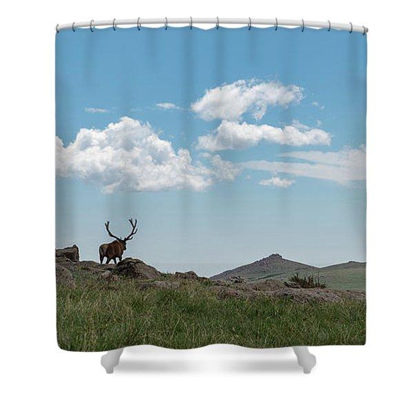 Rocky Mountain Elk Shower Curtain