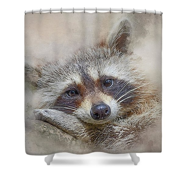 Rocky Raccoon Shower Curtain