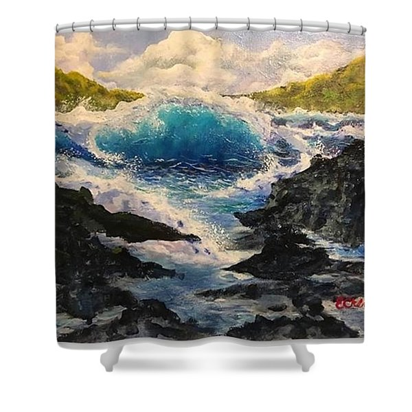 Rocky Sea Shower Curtain