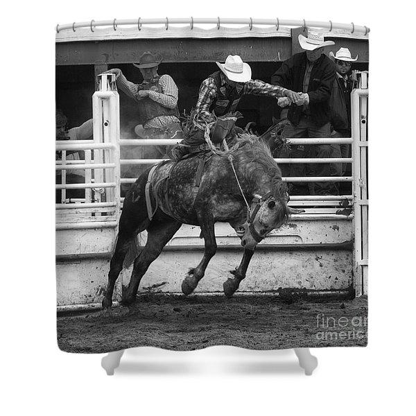Rodeo Saddleback Riding 4 Shower Curtain