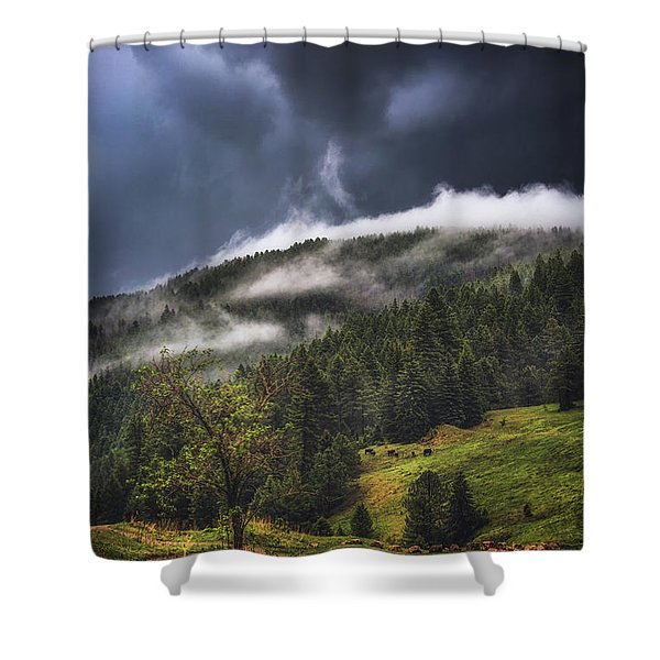 Rolling Through The Trees Shower Curtain