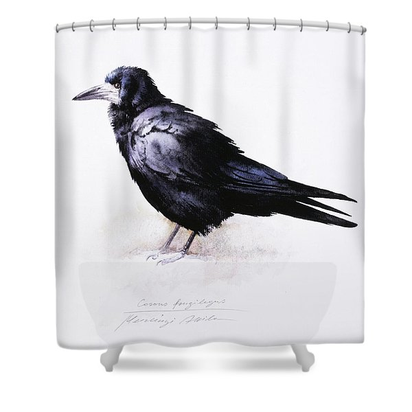 Rook Shower Curtain