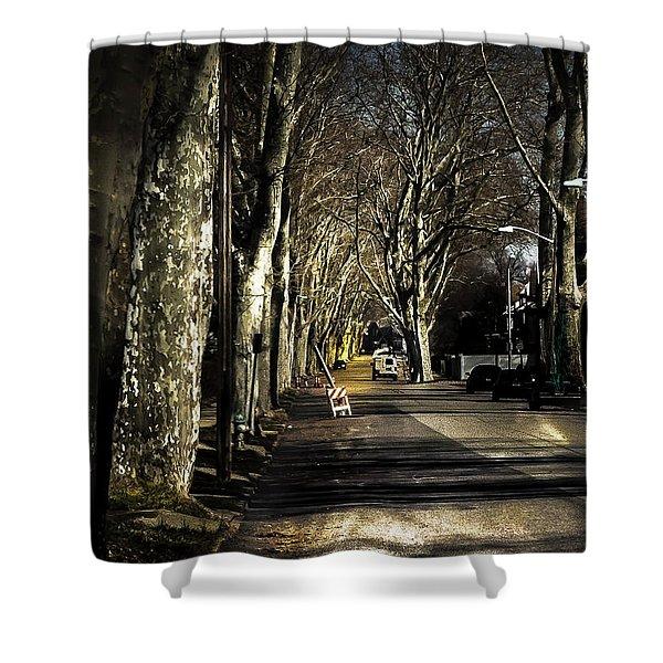 Roosevelt Avenue II Shower Curtain