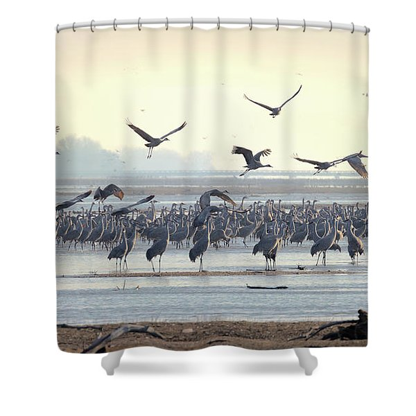 Roosting On The Platte Shower Curtain