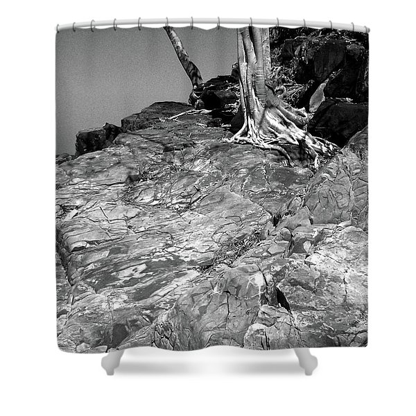 Rootflow Shower Curtain