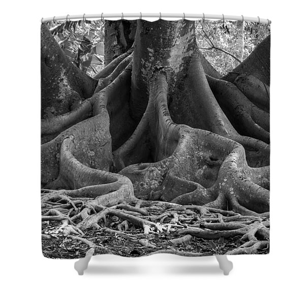 Roots Eleven Shower Curtain