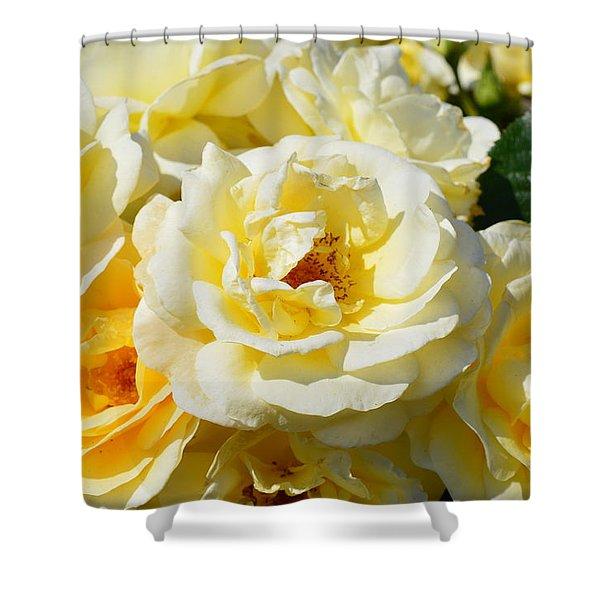 Rose Bush Shower Curtain