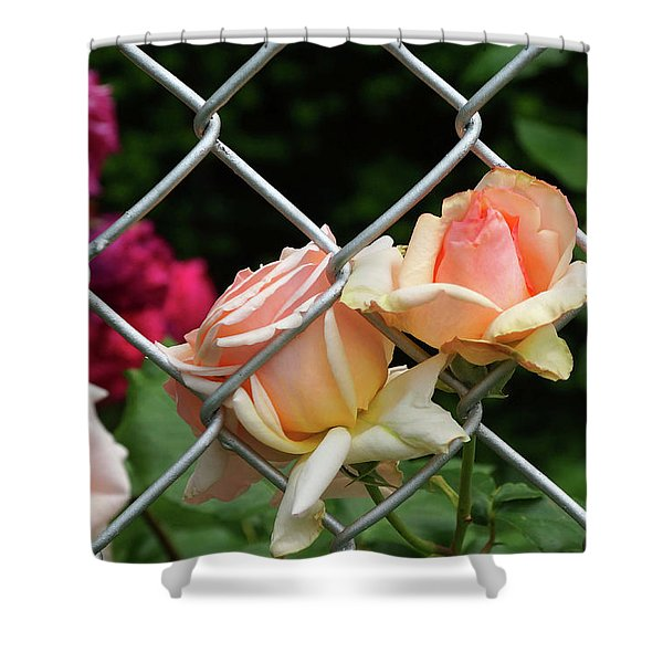 Rose Fence Shower Curtain