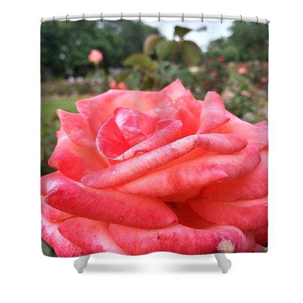 Rose Of Sharon - Faith Shower Curtain
