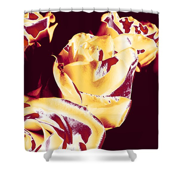 Roses #1 Shower Curtain