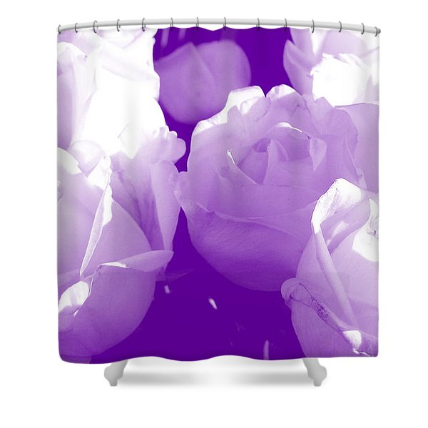 Roses #7 Shower Curtain