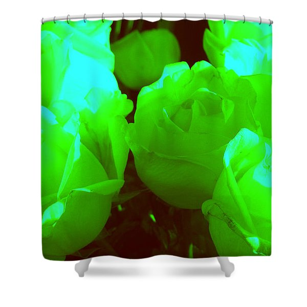 Roses #8 Shower Curtain