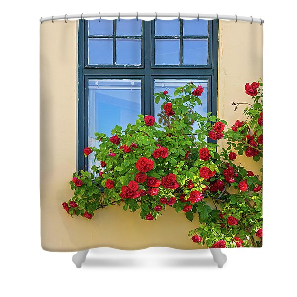 Roses Decorating A House Shower Curtain