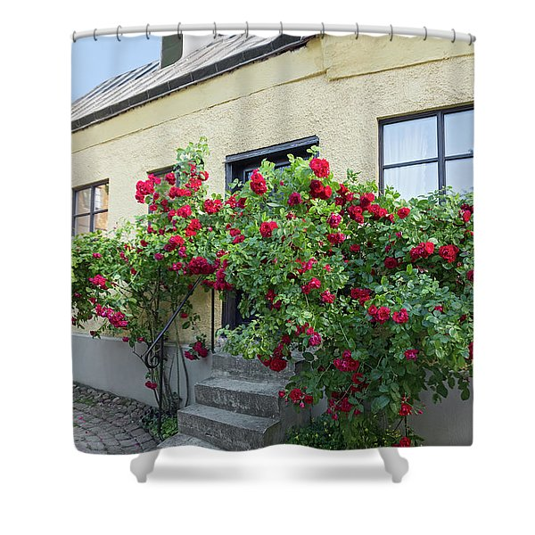 Roses Growing Near The House In A Swedish Town Visby Shower Curtain