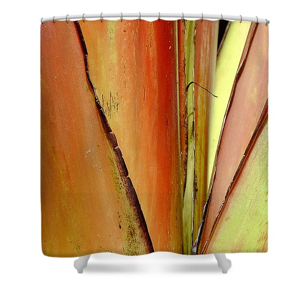 Rouge Shower Curtain