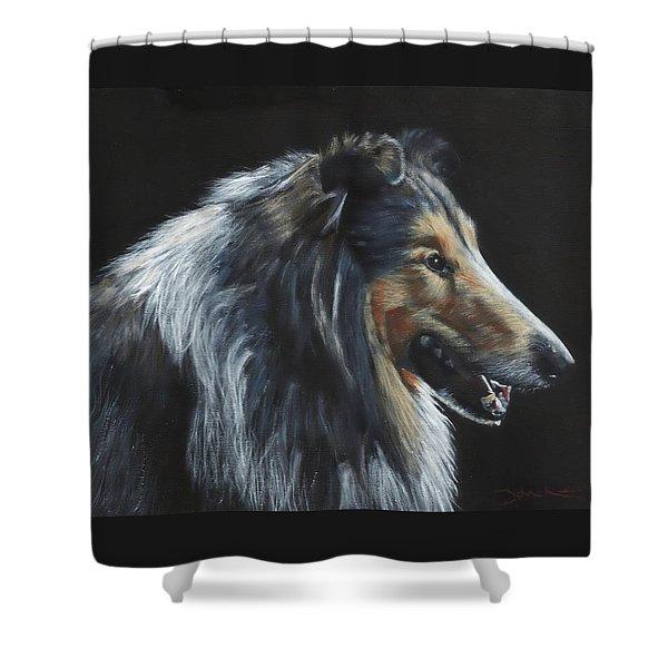 Rough Collie Shower Curtain