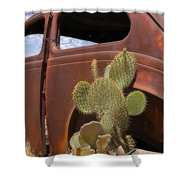 Route 66 Cactus Shower Curtain