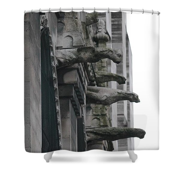 Row Of Gargoyles Shower Curtain