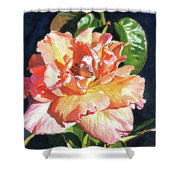 Royal Rose Shower Curtain