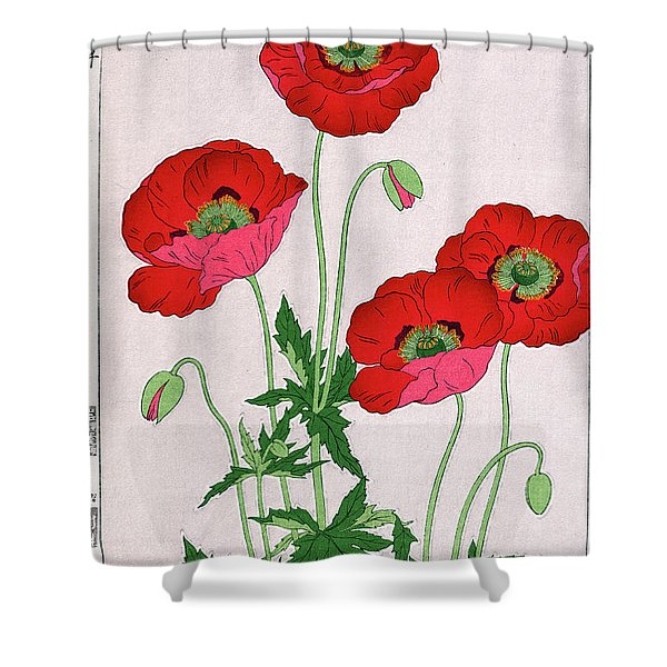 Roys Collection 7 Shower Curtain