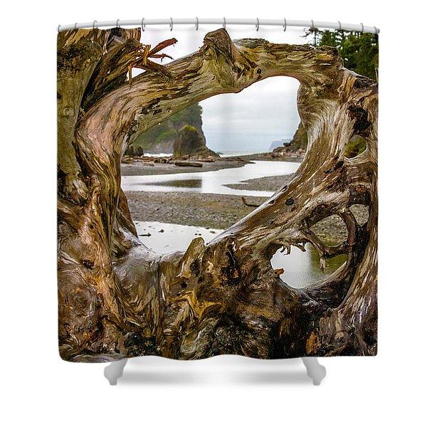 Ruby Beach Driftwood 2007 Shower Curtain