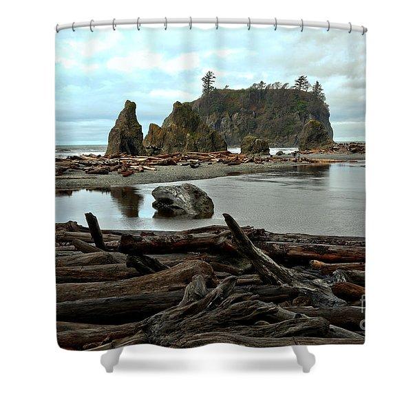 Ruby Beach Driftwood Shower Curtain
