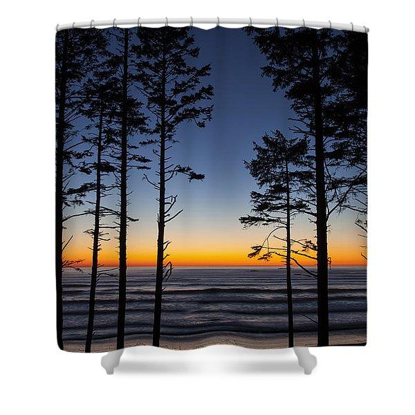Ruby Beach Trees #4 Shower Curtain