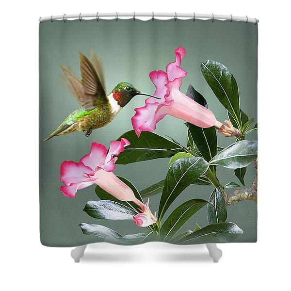 Ruby-throated Hummingbird And Desert Rose Shower Curtain