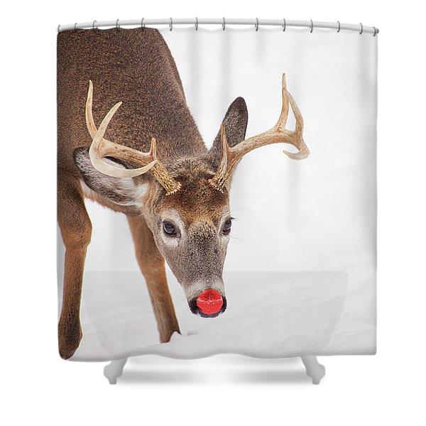 Rudolph Shower Curtain