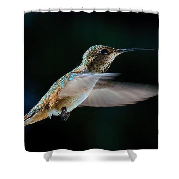 Rufous Shower Curtain