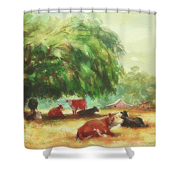 Rumination Shower Curtain