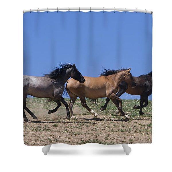 Running Free- Wild Horses Shower Curtain