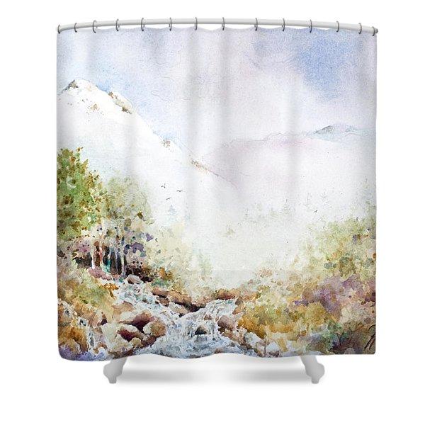 Runoff Shower Curtain