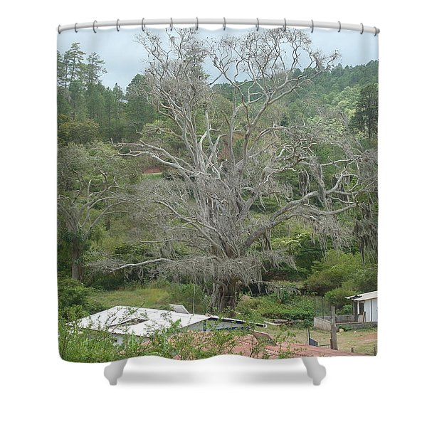 Rural Scenery Shower Curtain
