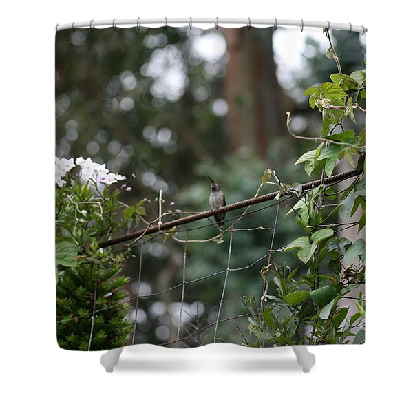Rustic Serenity Shower Curtain