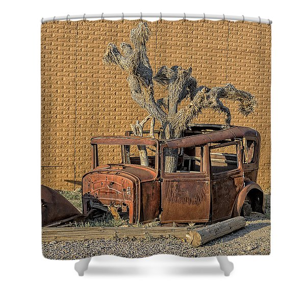 Rusty In The Desert Shower Curtain