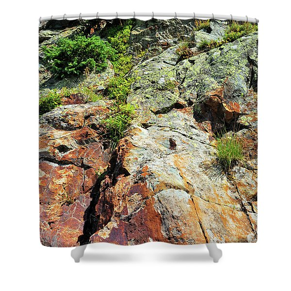 Rusty Rock Face Shower Curtain