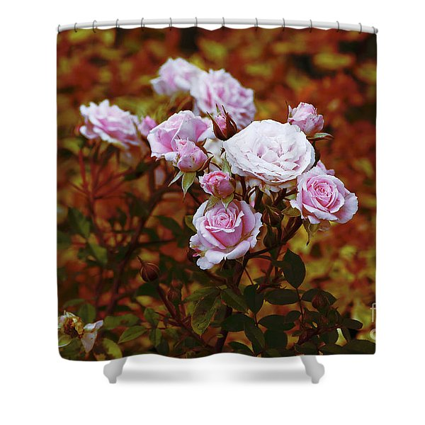 Rusty Romance In Pink Shower Curtain