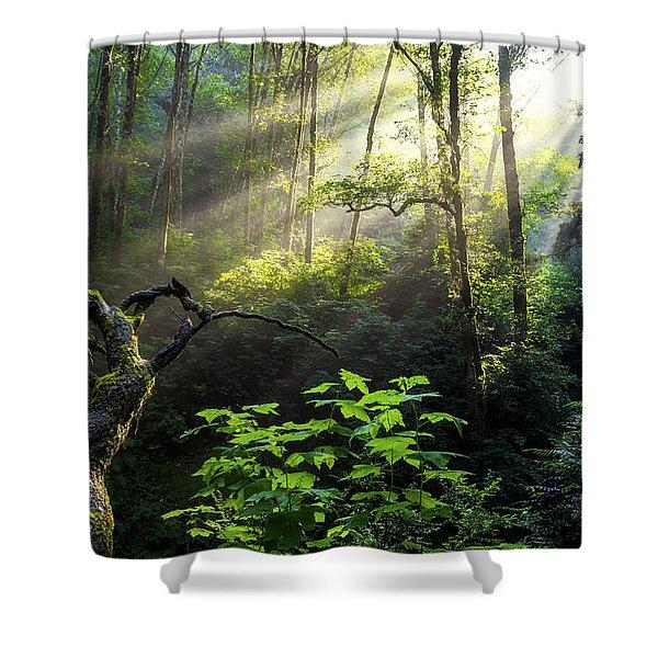 Sacred Light Shower Curtain