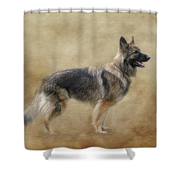 Sadie Shower Curtain