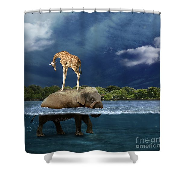 Safe Shower Curtain