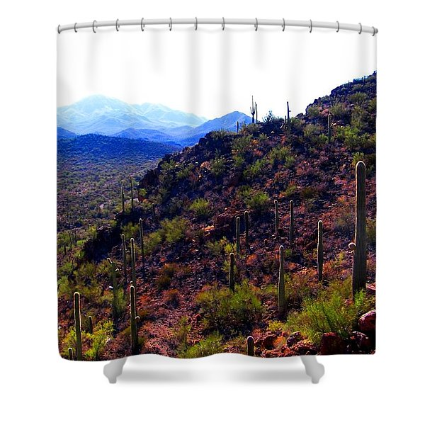 Saguaro National Park Winter 2010 Shower Curtain