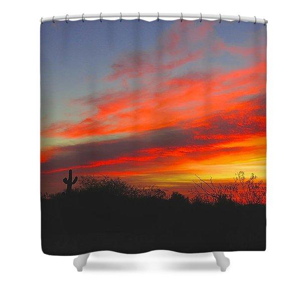 Saguaro Winter Sunrise Shower Curtain