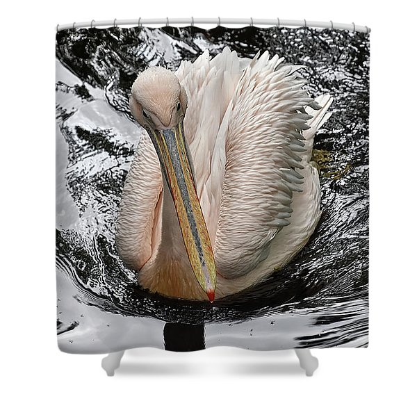 Sailing Along Shower Curtain