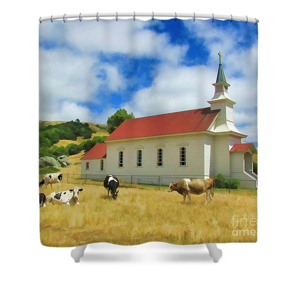 St. Mary's Visitors Shower Curtain