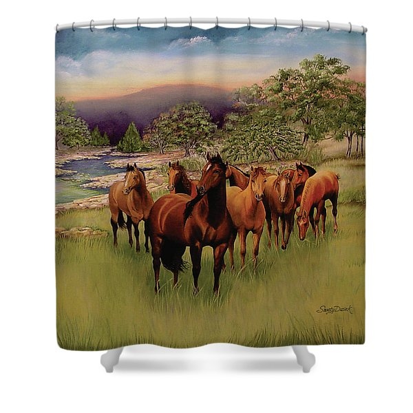 Salado 3 Shower Curtain
